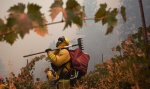 "Marin County firefighter Brett Grayson watches out for hotspots in a vineyard, as the fast-moving wildfire called ""Sand Fire"" burns near Plymouth, California July 26, 2014. REUTERS/Max Whittaker"