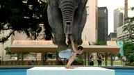 Elephant-carrying man on show in Hong Kong