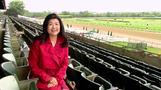 ベルモント・ステークスに全米が注目、競走馬への投資の旨味とリスク(13日)