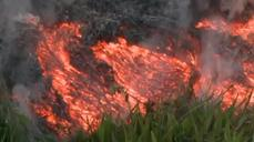 Hawaii lava flow edges towards dozens of homes