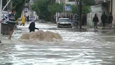 Devastated Gaza hit by heavy rains and flooding