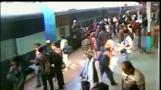 インドの駅で失神したサルを仲間が救出、奮闘ぶりに乗客から喝采(字幕・21日)