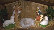 Baby Jesus in manger scene replaced with pig's head