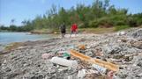 Plastic pollution devastating the world's oceans