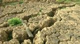 Bracing for dry season in drought-struck Brazil