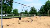 Mother of dead boy on swing had 'mental illness' - family