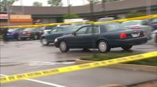 Boston police shoot machete-waving terror suspect