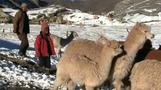 Snow, ice in Peru threatens high altitude communities