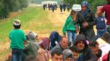 Hungary building anti-migrant fence