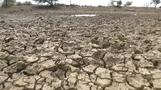 South African farmers in drought battle
