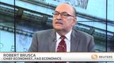 Fed is still preparing to hike rates-Bob Brusca