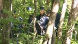 Search expands for Japanese boy left in forest