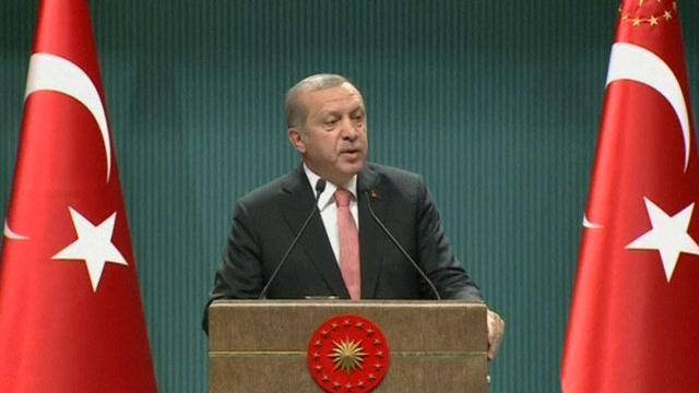土耳其总统宣布国家进入紧急状态