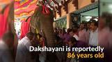 India honors 'Grandma Elephant' in special ceremony