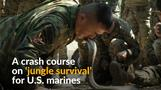 Thai instructors teach U.S. marines to survive in the jungle