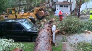Deadly storm lashes California