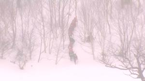 Eight students feared dead in Japanese avalanche