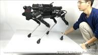 Four-legged 'robodog' leaps into action