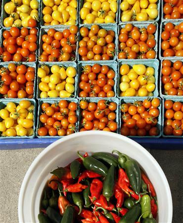 Cherry tomatoes and hot peppers are displayed for sale at the Food Project's Farmer's Market in the Boston neighborhood of Dorchester, Massachusetts August 14, 2007. A new presidential report on cancer takes on not only tobacco companies but the food industry while calling on the federal government to ''cease being a purveyor of unhealthy foods'' and switch to policies that encourage Americans to eat vegetables and exercise. REUTERS/Brian Snyder