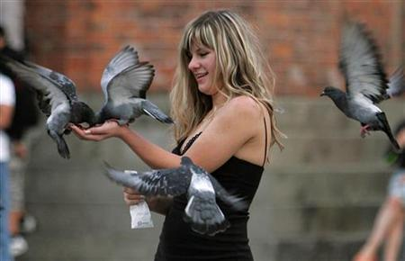 Pigeons perch on the hand of a tourist visiting Saint Marc's square in Venice in a file photo. A recent study estimated that cleaning up monuments and repairing the damage caused by pigeons cost each Venetian taxpayer 275 euros ($381.3) a year. REUTERS/Chris Helgren