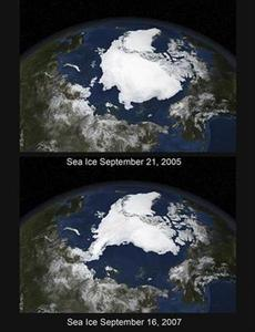 A combination photo of NASA satellite images from September 21, 2005 (top) and September 16, 2007 (bottom) and released on September 21, 2007 shows Arctic summer sea ice coverage in 2005 and 2007 respectively. REUTERS/NASA/Handout.