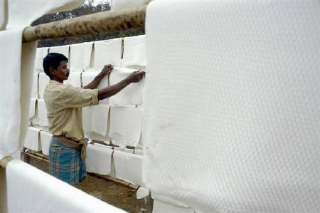 A worker hangs rubber sheets up to dry at a rubber plantation in Ramnagar village, 25 km south of Agartala, in this July 29, 2007 file photo. India's rubber output is likely to fall by 60,000 tonnes in the year to March 2008 from an earlier estimate of 803,000 tonnes as heavy rains disrupt collection. REUTERS/Jayanta Dey