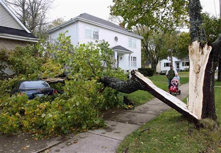 A car is crushed under a tree, toppled by Hurricane Noel, on First street in Halifax, Nova Scotia November 4, 2007. REUTERS/Paul Darrow