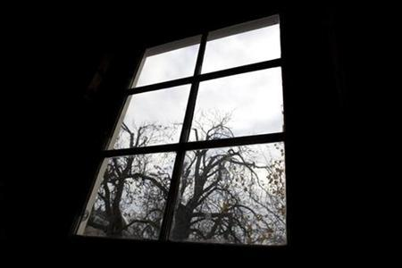 dutch court saves anne frank tree from the chop reuters. Black Bedroom Furniture Sets. Home Design Ideas