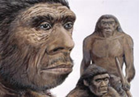 Neanderthals in an undated illustration. Human evolution has been moving at breakneck speed in the past several thousand years, far from plodding along as some scientists had thought, researchers said on Monday. In fact, people today are genetically more different from people living 5,000 years ago than those humans were different from the Neanderthals who vanished 30,000 years ago, according to anthropologist John Hawks of the University of Wisconsin. REUTERS/Handout