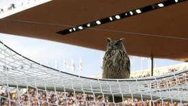 """<p>""""Bubi"""", le grand-duc qui avait interrompu un match éliminatoire pour l'Euro 2008 en se posant nonchalamment sur la cage du gardien, a été sacré citoyen d'honneur de l'année par l'association des journalistes d'Helsinki. /Photo prise le 6 juin 2007/REUTERS/Sebastien Pirlet</p>"""
