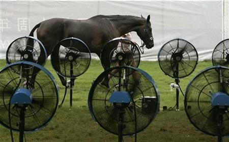 A horse is led to a misting tent for cooling after the equestrian cross country test of the eventing competition at the Hong Kong Olympic Equestrian Venue in Bea River, Hong Kong August 12, 2007. Hong Kong's summer heat posed little risk to horses in the 2008 Olympic equestrian events and the Swiss dressage team's pullout would have no effect on the Games, the body organizing the equine events said on Thursday. REUTERS/Bobby Yip