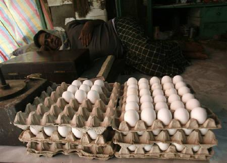 A vendor rests inside his poultry shop at a wholesale market in Kolkata January 24, 2008. REUTERS/Jayanta Shaw