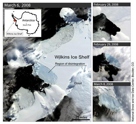 Satellite images show that a large hunk of Antarctica's Wilkins Ice Shelf has started to collapse in a fast-warming region of the continent, scientists said on Tuesday. This series of satellite images shows the Wilkins Ice Shelf as it begins to break up. The large image is from March 6. The images at right, from top to bottom, are from Feb. 28, Feb. 29 and March 8. The images were processed from the MODIS satellite sensor flying on NASA's Earth Observing System Aqua and Terra satellites. REUTERS/NSIDC/NASA/University of Colorado.