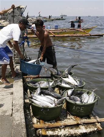 Fishermen unload fish along a coastline in Manila April 9, 2008. REUTERS/Cheryl Ravelo