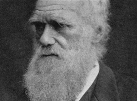 Charles Darwin in an undated photo. The first draft of Darwin's ''On The Origin Of Species'' is among a wealth of papers being published on the Internet on Thursday for the first time. REUTERS/File