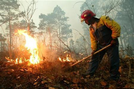 A firefighter battles a blaze during a wild fire on the outskirts of Tegucigalpa in this April 28, 2005 file photo. REUTERS/Tomas Bravo