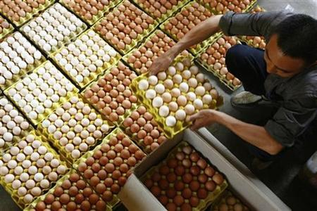 A vendor arranges eggs at a poultry market in Kunming, capital of southwest China's Yunnan province in this June 13, 2007 file photo. REUTERS/Stringer