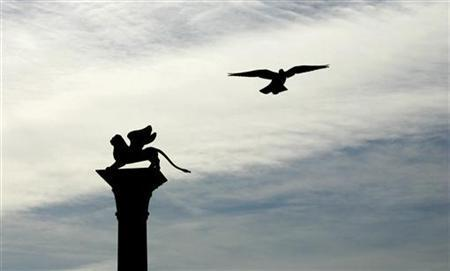 A pigeon flies past the Leon of San Marco in Venice August 29, 2006. REUTERS/Fabrizio Bensch