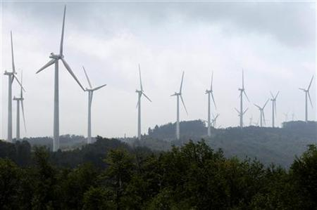 Power-generating windmill turbines form a wind farm on Backbone Mountain near Thomas, West Virginia August 28, 2006. REUTERS/Jonathan Ernst