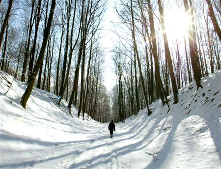 A man walks through a snow-covered park in a file photo. Elderly dementia patients prescribed antipsychotic drugs are at three times the risk of a serious health problem or dying within a month of treatment, compared to those not given the drugs, researchers said on Monday. REUTERS/Francois Lenoir