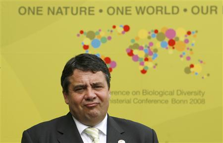 German Environment Minister Sigmar Gabriel poses at the UN Convention on Biological Diversity in Bonn May 28, 2008. REUTERS/Ina Fassbender