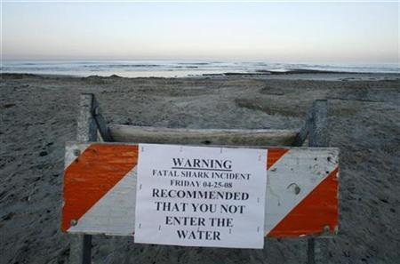 File image shows a sign posted by local authorities in Cardiff, California April 26, 2008. Cooler than normal sea-surface temperatures due to the La Nina phenomenon may be partly responsible for a spate of fatal shark attacks off Mexico's Pacific coast, a U.S. shark expert said on Friday. REUTERS/Mike Blake