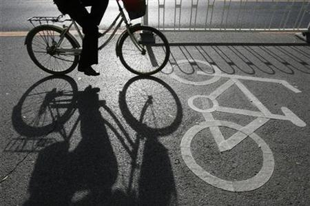 A cyclist rides along a bicycle lane in Beijing November 19, 2007. REUTERS/Claro Cortes IV