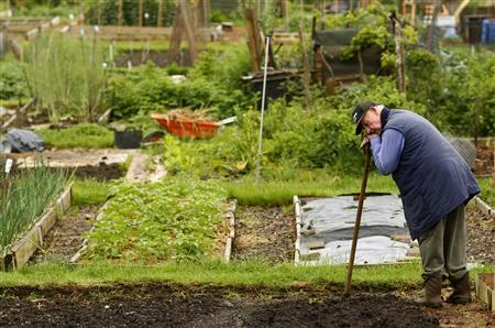A cultivator takes a break while digging in his allotment in south London May 28, 2008. Almost 70 years after Britons were urged to Dig For Victory to produce hearty home-grown food to help the war effort, domestic horticulture is coming back. REUTERS/Alessia Pierdomenico