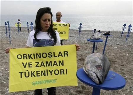 Greenpeace activists with placards reading ''Time and tuna are running out'' demonstrate on a beach in Antalya November 18, 2007. REUTERS/Stringer