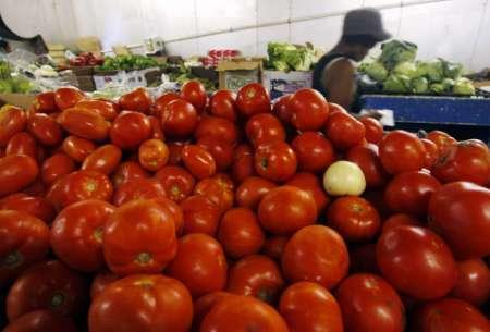 A pile of tomatoes is seen on display at a wholesale produce market in Washington, June 12, 2008. REUTERS/Jim Young