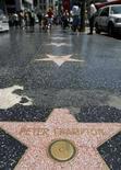 <p>Immagine che mostra alcune crepe lungo la Walk of Fame di Hollywood, il 22 luglio 2008. REUTERS/Mario Anzuoni (Usa)</p>