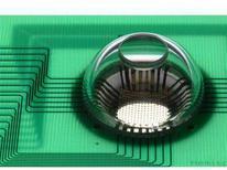 <p>La videocamera elettronica a forma di occhio realizzata dai ricercatori Usa e montata su un circuito stampato per essere collegata a un computer, permettendo l'acquisizione dei dati. REUTERS/Beckman Institute, University of Illinois/Handout</p>