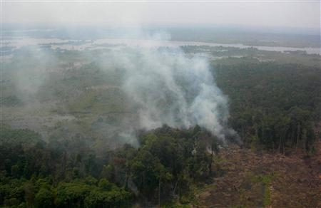 An aerial view of a burnt forest area at the Bengkalis district of Indonesia's Riau province August 6, 2008. More than 500 hot spots have been spotted across Indonesia's Sumatra island, signalling the annual dry-season forest fires and haze it carries, a Forestry Minister official said on Monday. REUTERS/Stringer