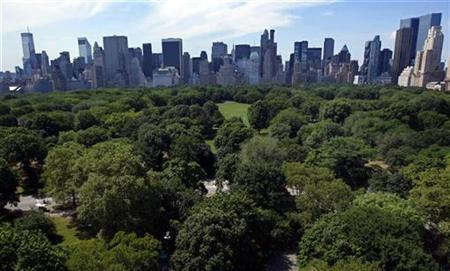 A view of the New York skyline with buildings along Central Park South, as seen from the AeroBalloon ride flying above New York's Central Park on the opening day of rides open to the public, July 25, 2008. REUTERS/Mike Segar